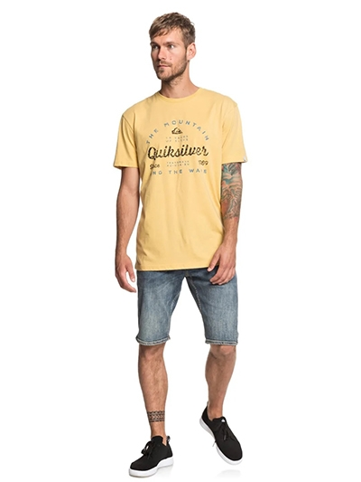 Quiksilver Men's Drop In