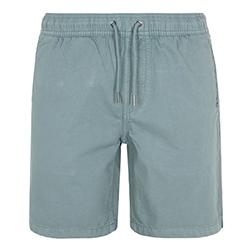 Men's Brainwashed Shorts
